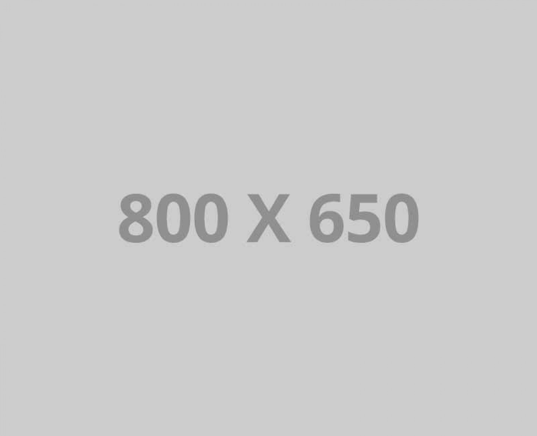 pofo 800x650-ph