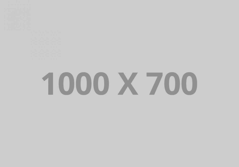 pofo 1000x700-ph